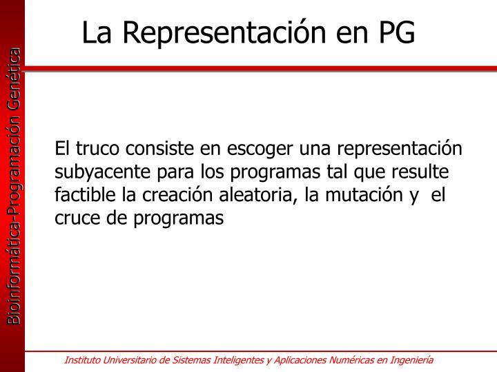 La Representación en PG