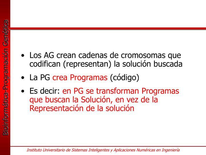 Los AG crean cadenas de cromosomas que codifican (representan) la solución buscada