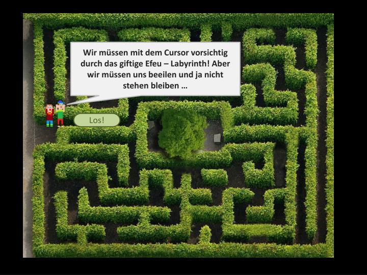 Wir müssen mit dem Cursor vorsichtig  durch das giftige Efeu – Labyrinth! Aber wir müssen uns beeilen und ja nicht stehen bleiben …