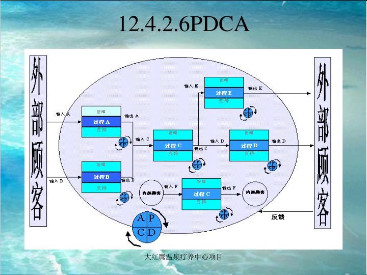 12.4.2.6PDCA