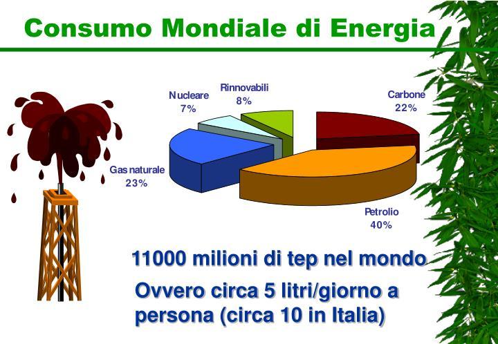 Consumo Mondiale di Energia