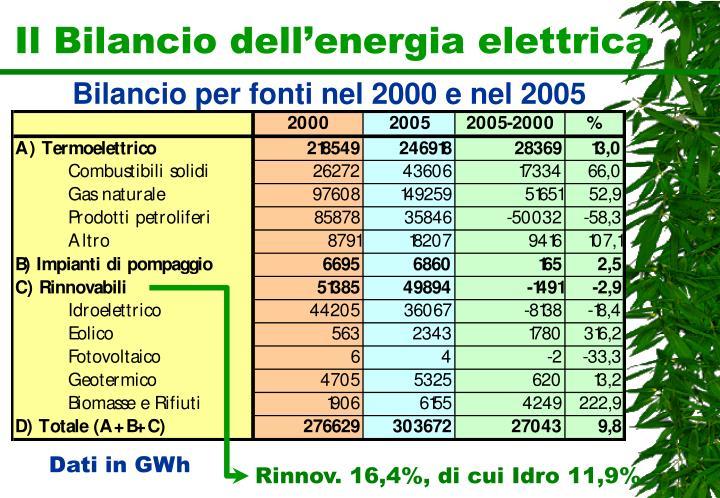 Il Bilancio dell'energia elettrica