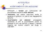 autotutela e accertamento con adesione1