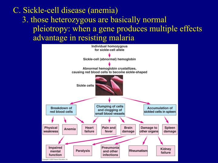 C. Sickle-cell disease (anemia)