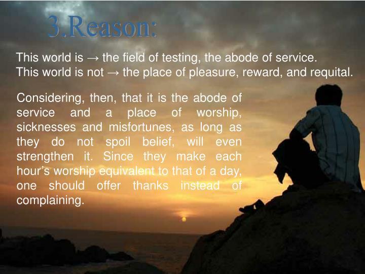 3.Reason: