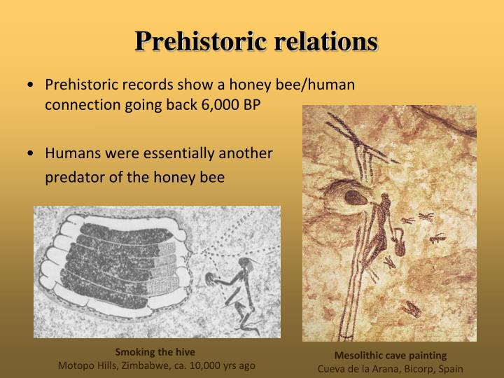 Prehistoric relations