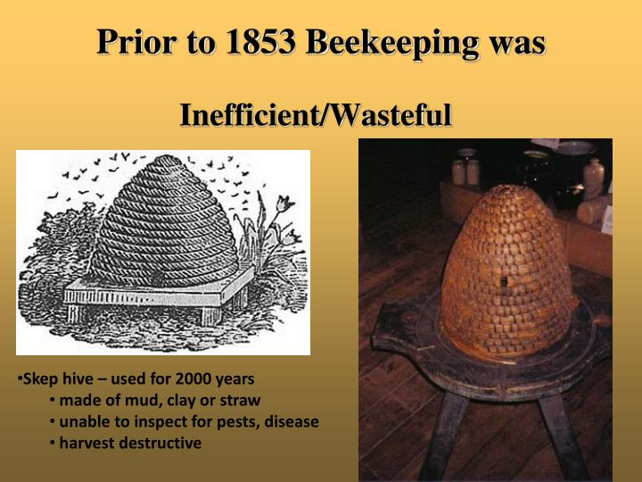 Prior to 1853 Beekeeping was