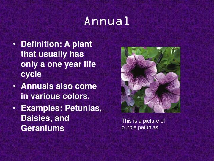 Annual
