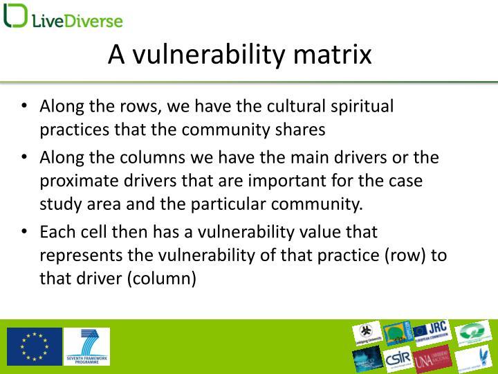 A vulnerability matrix