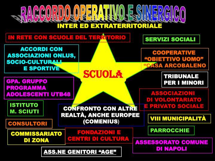 RACCORDO OPERATIVO E SINERGICO