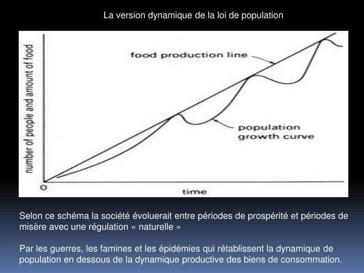 La version dynamique de la loi de population
