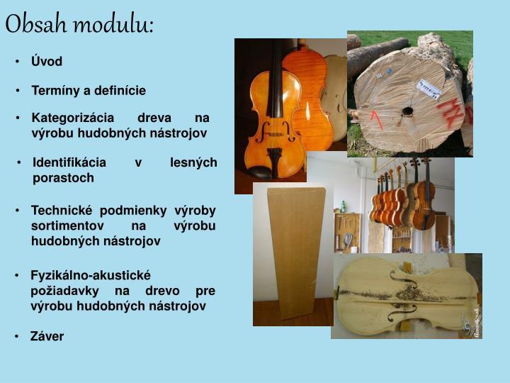 Obsah modulu: