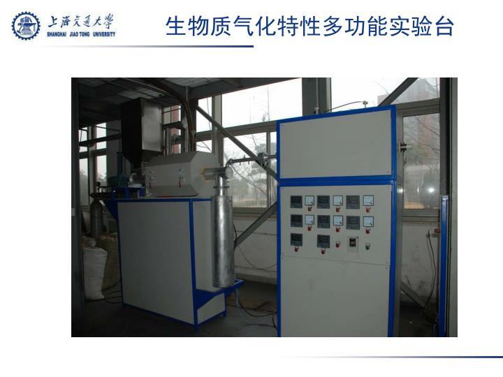 生物质气化特性多功能实验台