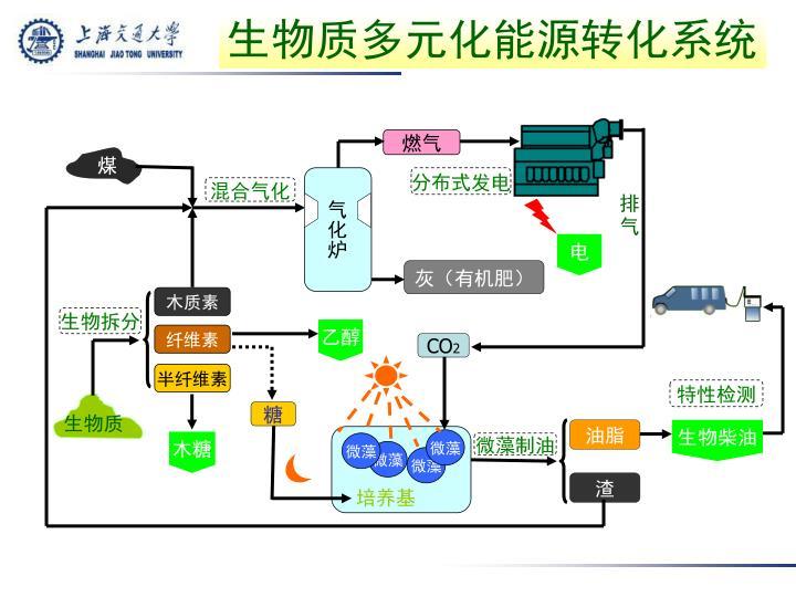 生物质多元化能源转化系统