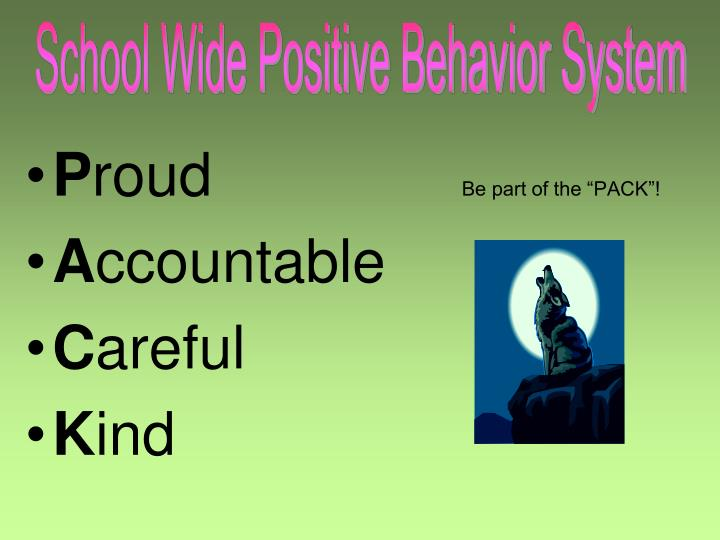 School Wide Positive Behavior System
