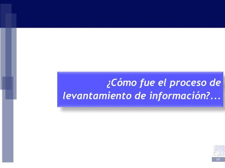 ¿Cómo fue el proceso de levantamiento de información?...