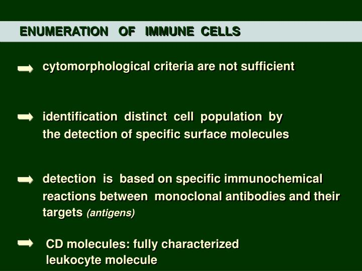 ENUMERATION   OF   IMMUNE  CELLS
