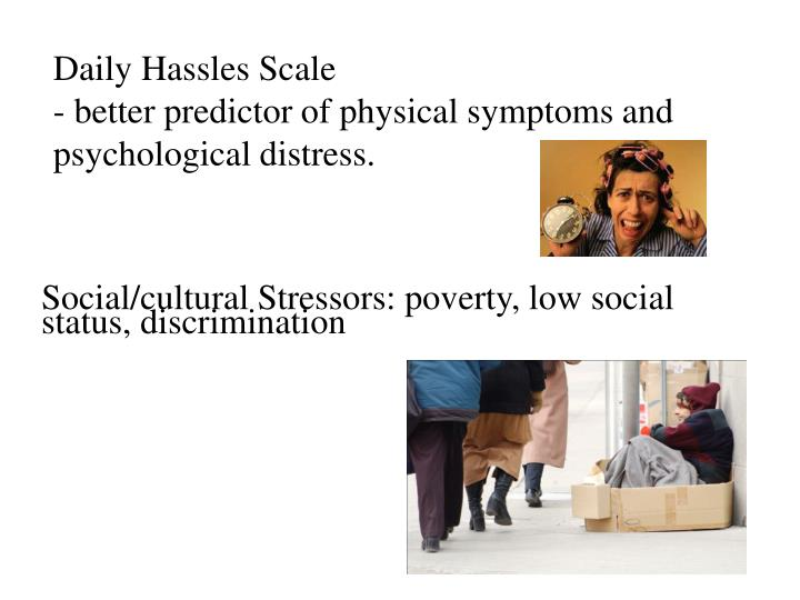 Daily Hassles Scale