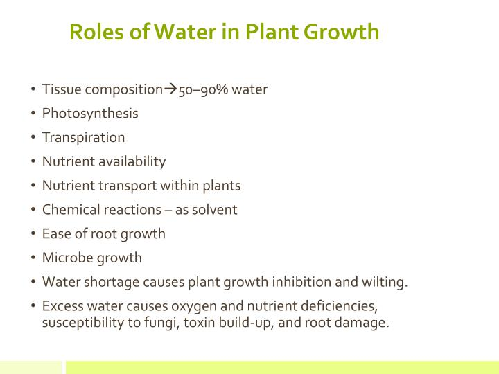 Roles of water in plant growth