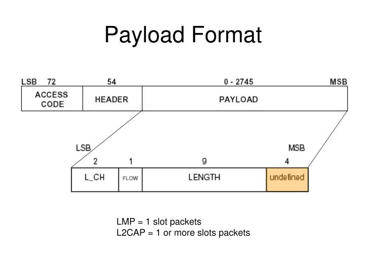 Payload Format