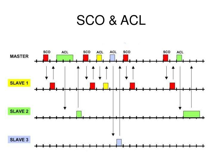 SCO & ACL
