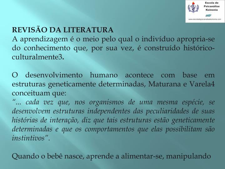 REVISO DA LITERATURA