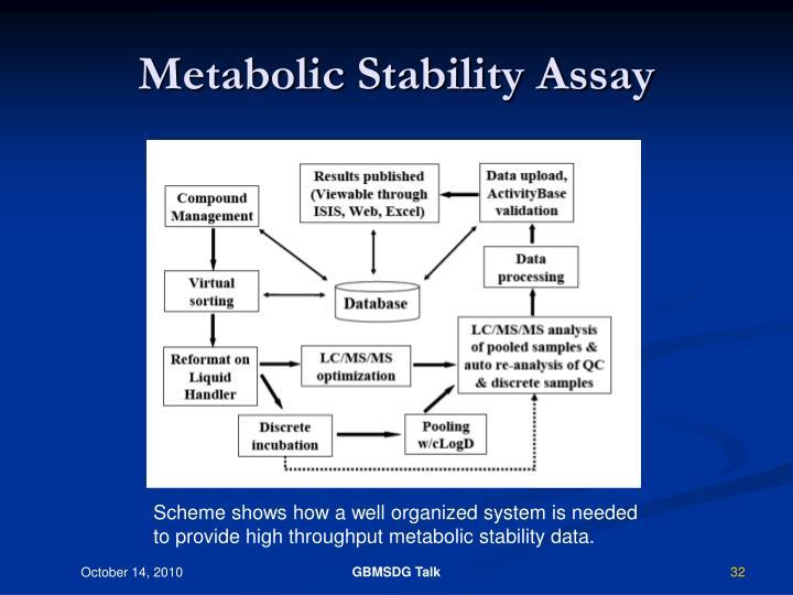 Metabolic Stability Assay