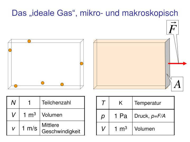 """Das """"ideale Gas"""", mikro- und makroskopisch"""