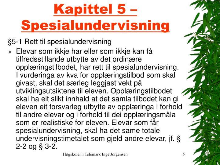 Kapittel 5 – Spesialundervisning