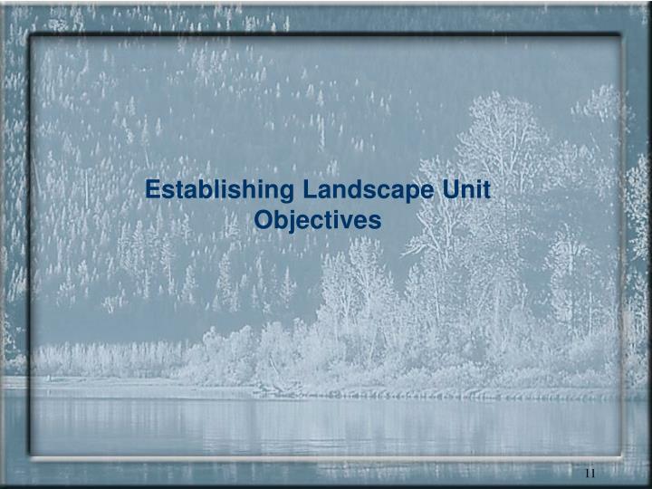 Establishing Landscape Unit Objectives