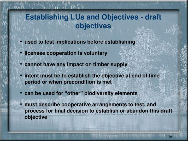 Establishing LUs and Objectives - draft objectives
