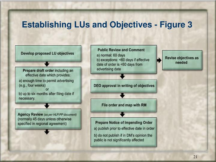 Establishing LUs and Objectives - Figure 3