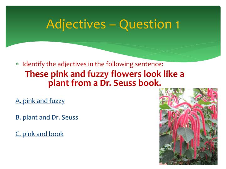 Adjectives – Question 1