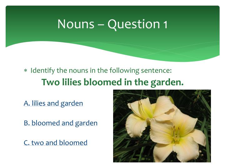 Nouns – Question 1
