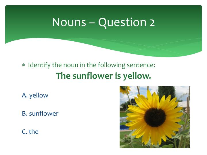 Nouns – Question 2
