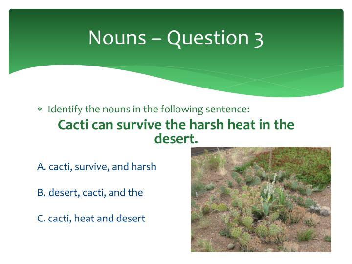 Nouns – Question 3