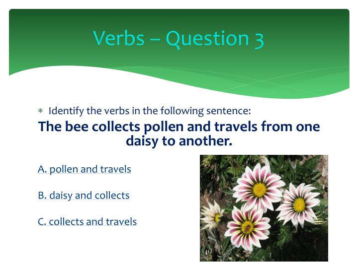 Verbs – Question 3