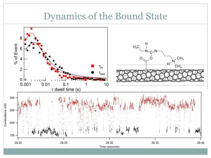 Dynamics of the Bound State