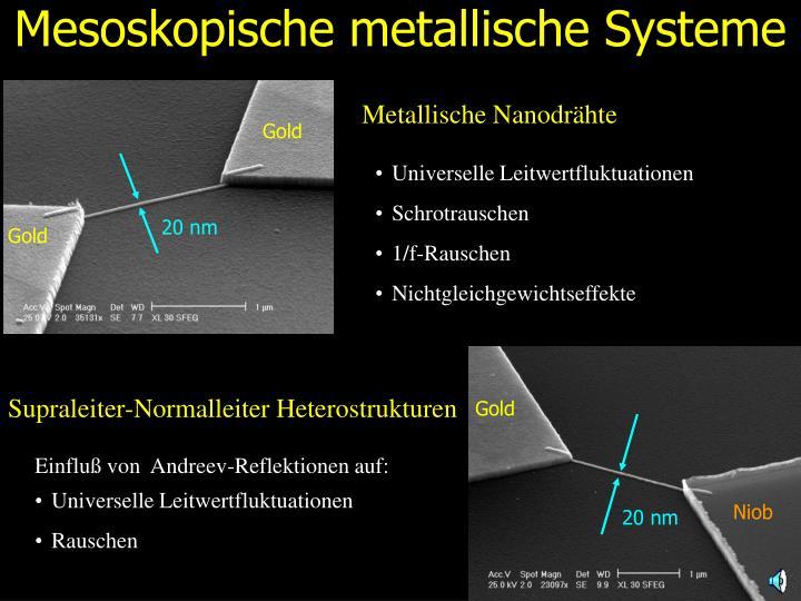 Mesoskopische metallische Systeme