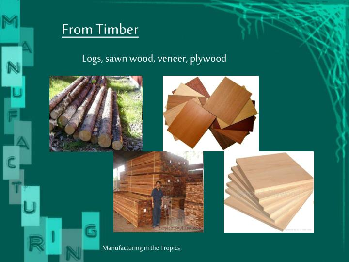 From Timber