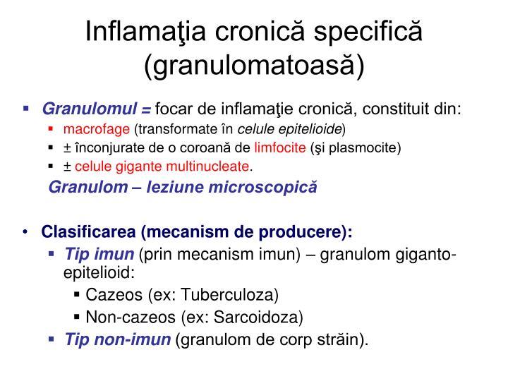 Inflamaţia cronică specifică