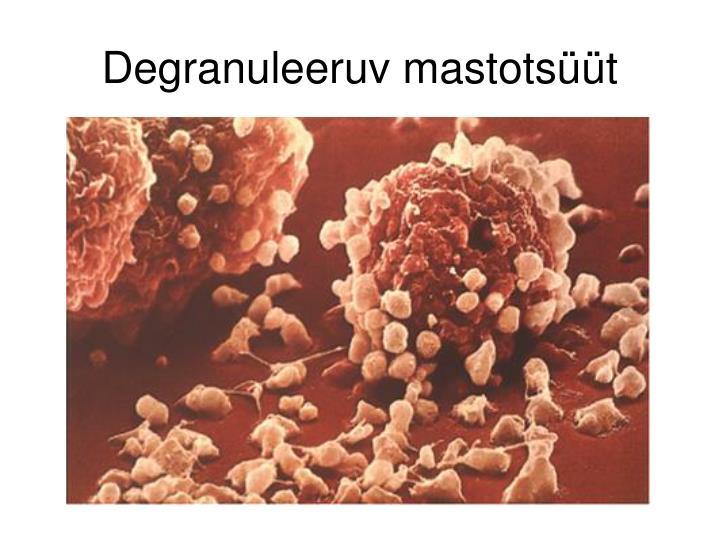Degranuleeruv mastotsüüt