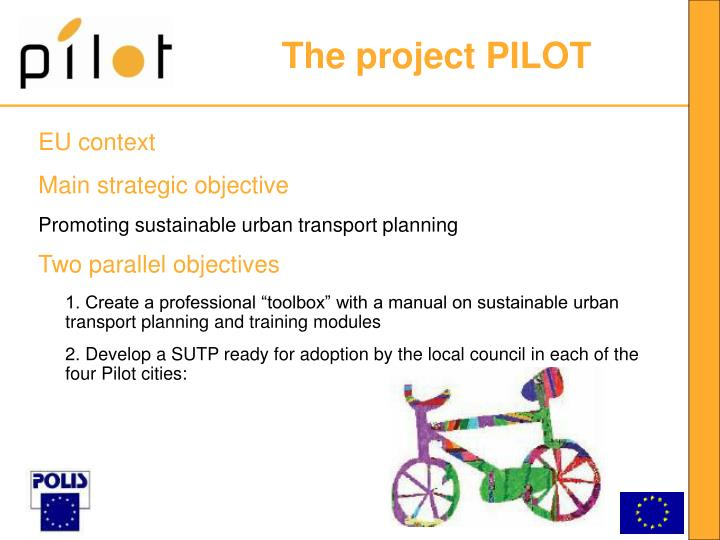 The project pilot