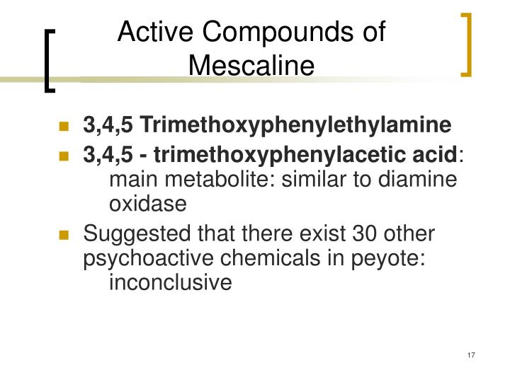 Active Compounds of Mescaline