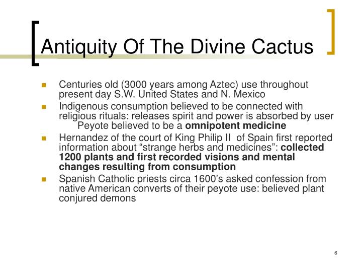 Antiquity Of The Divine Cactus