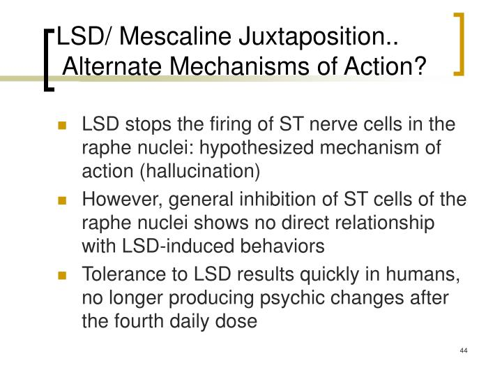 LSD/ Mescaline Juxtaposition..