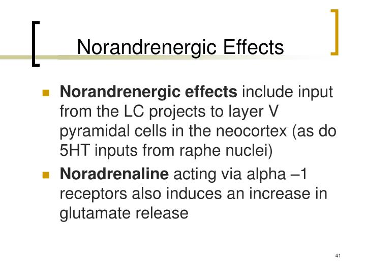 Norandrenergic Effects