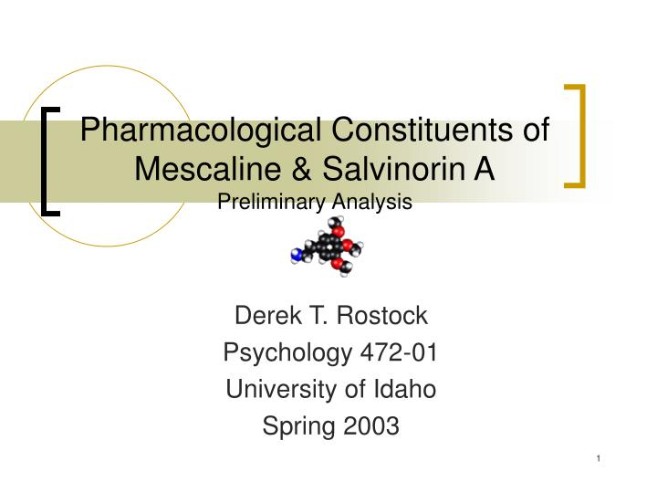 Pharmacological constituents of mescaline salvinorin a preliminary analysis