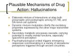 plausible mechanisms of drug action hallucinations