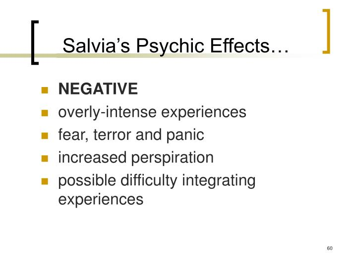 Salvia's Psychic Effects…